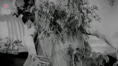 Sunehri Nagin_evil trees
