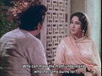 Bahu Begum-moth