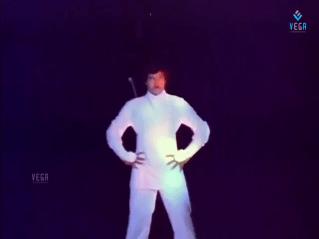 Roshagadu-Fencing