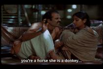 Stri-donkey