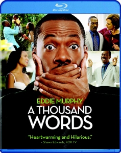 A-Thousand-Words-cover-28237x300-29