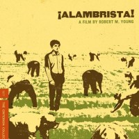 DVD Review: ¡Alambrista! - The Criterion Collection