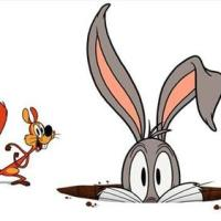 Coming To DVD April 26 - Wabbit: A Looney Tunes Production Season 1 Part 1