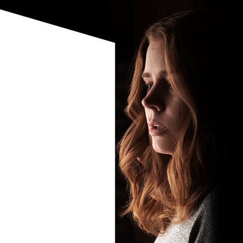 la donna alla finestra locandina