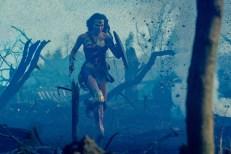 Gal Gadot - Wonder Woman - Mujer Maravilla