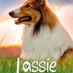 Locandina Lassie Torna a Casa