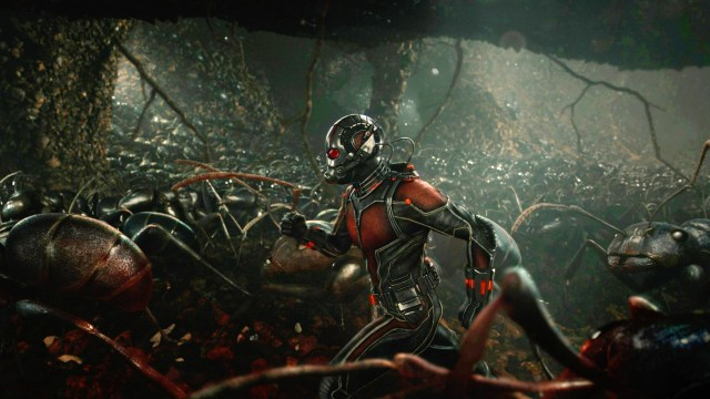 antman-ants-Featured.jpg