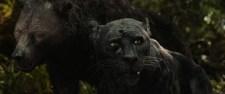 """Bagheera in the Netflix film """"Mowgli: Legend of the Jungle"""""""