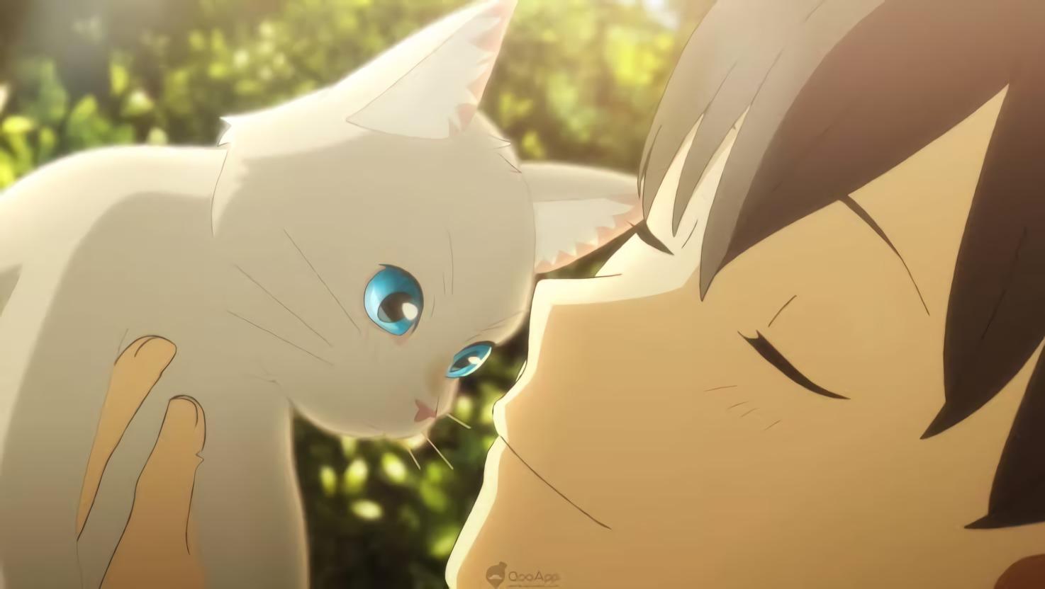 Reseña de Amor de gata, película animada de Netflix