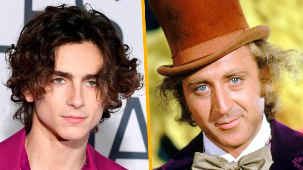 Timothée Chalamet será el nuevo Willy Wonka