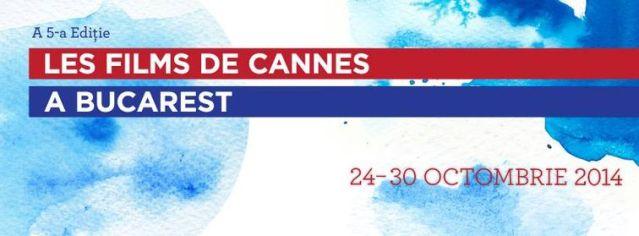 Filme de festival vs filme comerciale