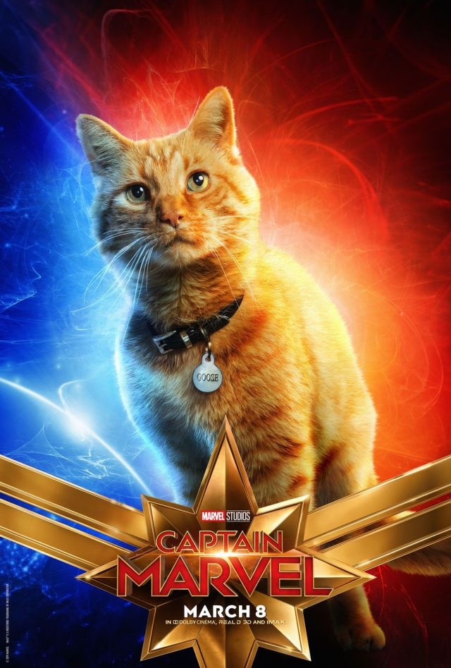 Pisica Goose din Captain Marvel