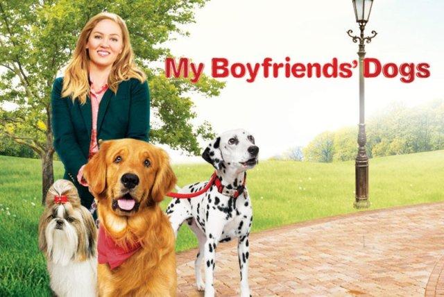 Um Amor Verdadeiro': Conheça o filme com cachorros exibido na Sessão da  Tarde | CinePOP