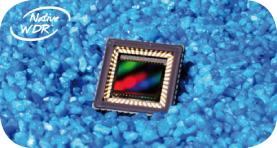 NIT WDR color sensor