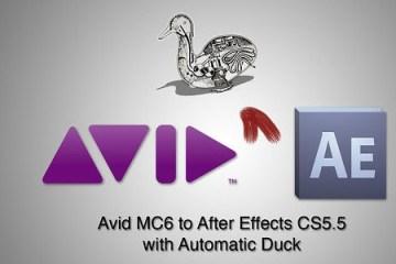 Avid_MC6_Automatic_Duck