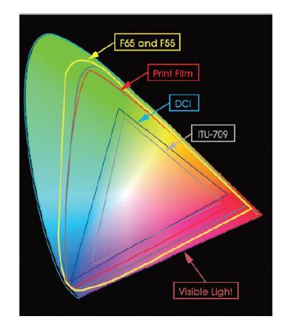 Sony F55 Light