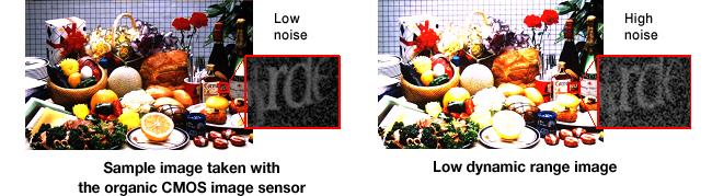 Organic CMOS Sensor