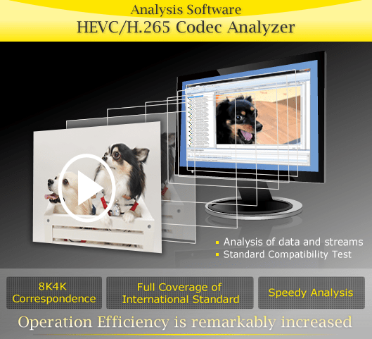 Nikon HEVC:H.265 Codec Analyzer