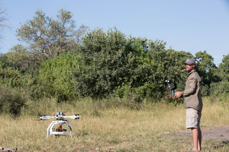 AERIGON Provides Aerial Cinematography for Natural History Film Unit on Return of the Giant Killers 4