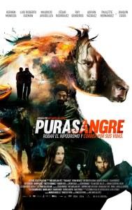Poster-Purasangre