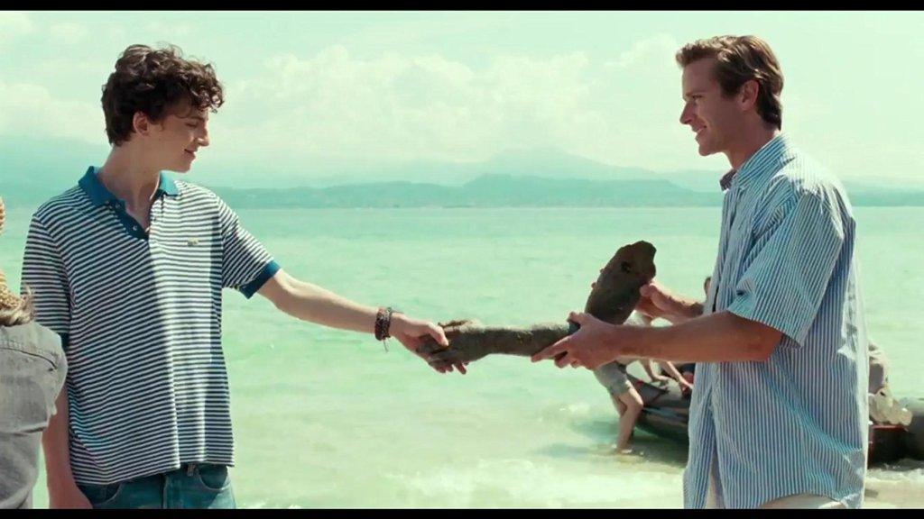 "¿Qué aprendimos de ""Call me by your name?"