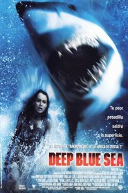 Alerta en lo Profundo / Deep Blue Sea