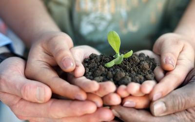 Evaluer l'intégration de critères environnementaux et sociaux dans les marchés publics.