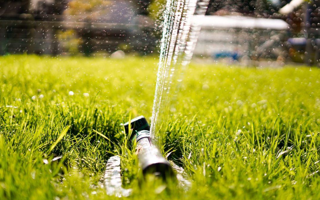 Sécheresse : Ecolo demande une gestion responsable de l'eau