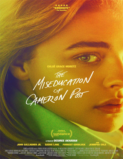 Poster de The Miseducation of Cameron Post