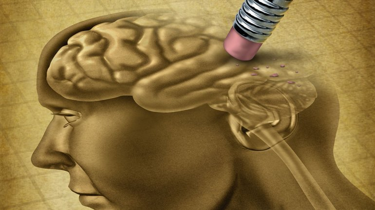 Logran crear un cerebro humano