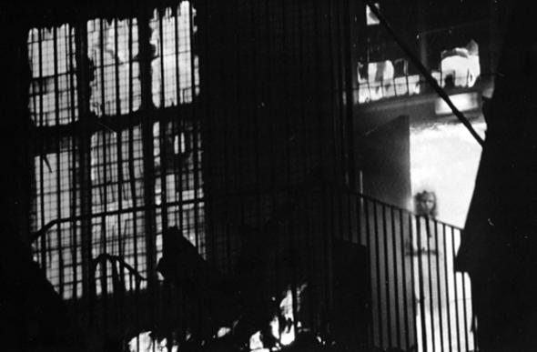 Foto de fantasma de la niña en el balcón