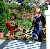 Chicken hugger.