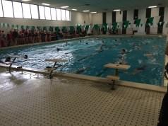 Swimming Semifinal Round, veteran swimmers, 2-0