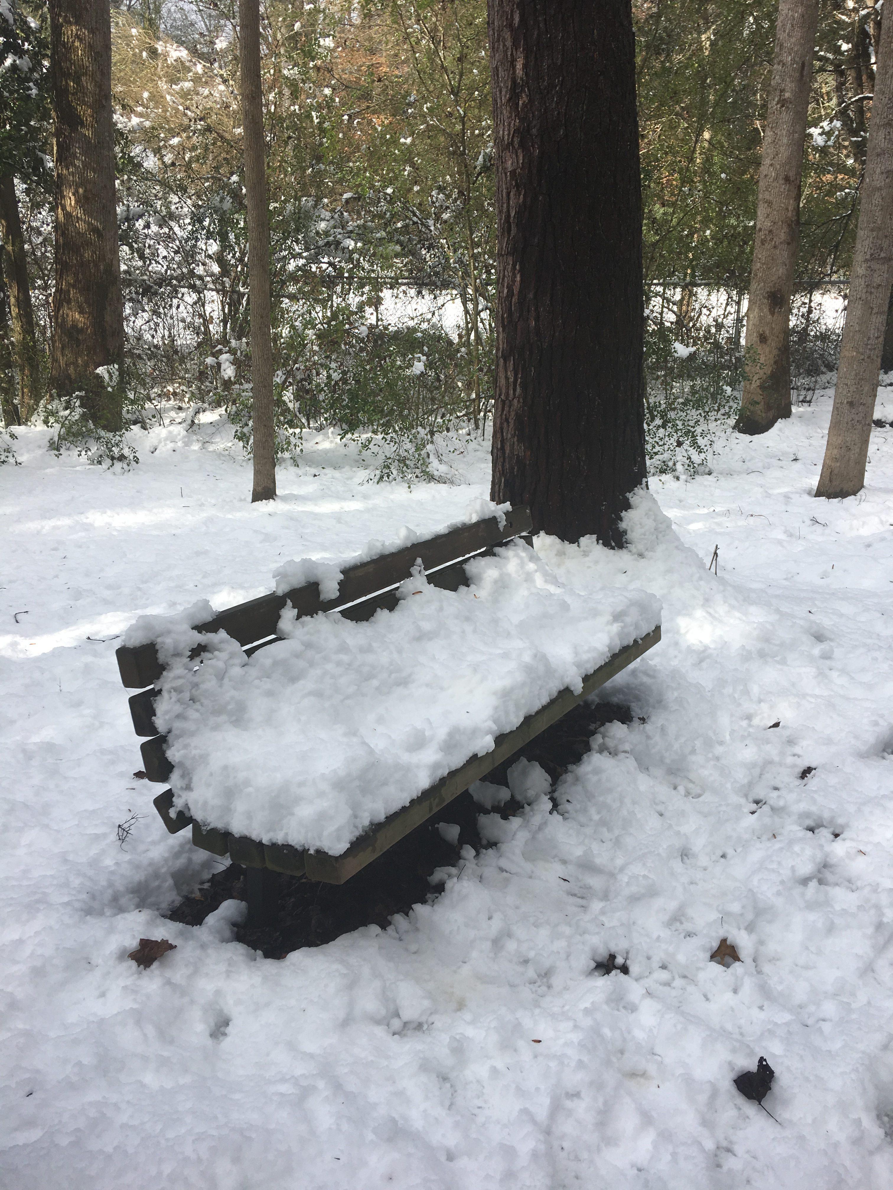 My bench!