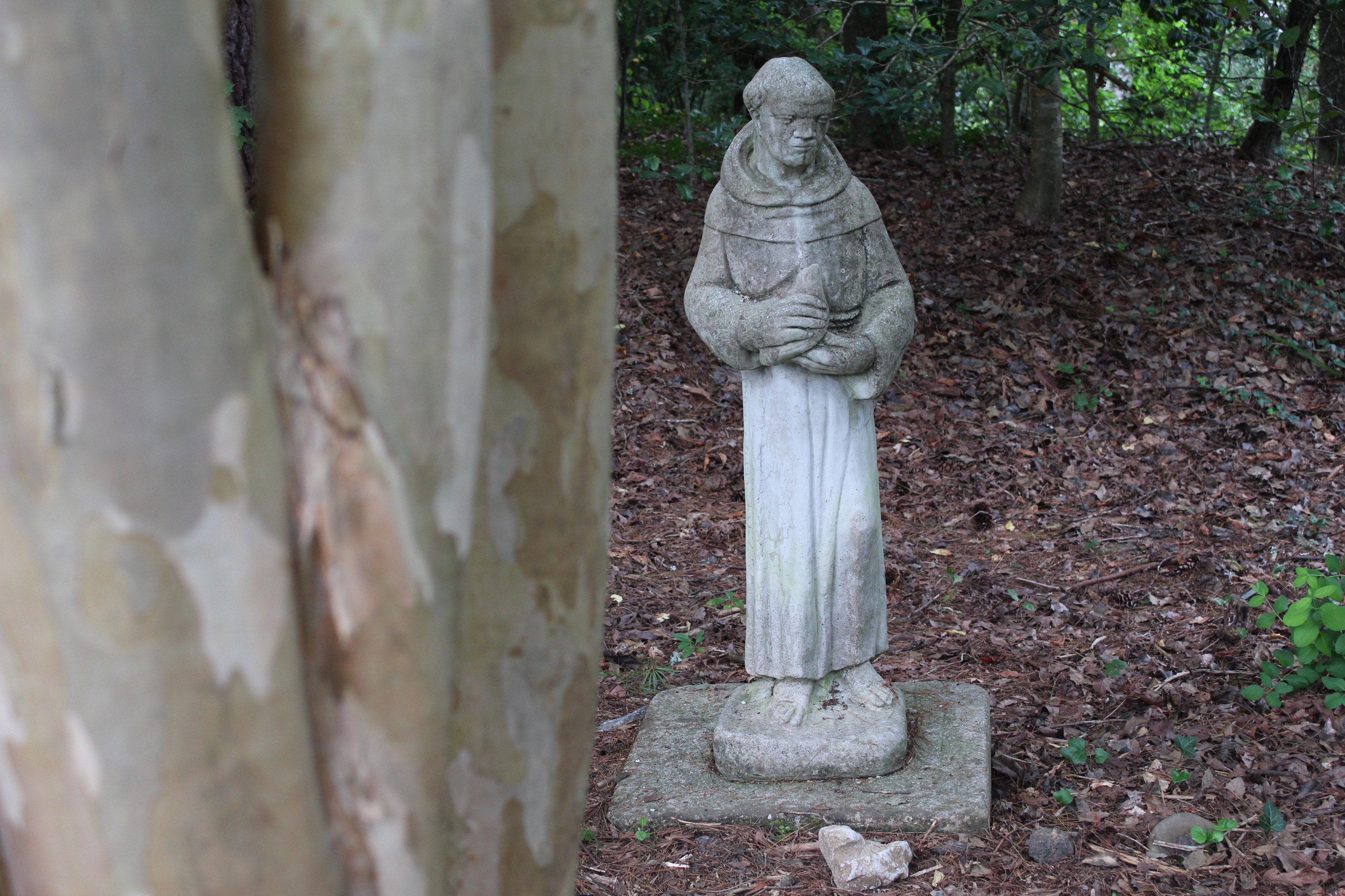 Statue in the shade garden.