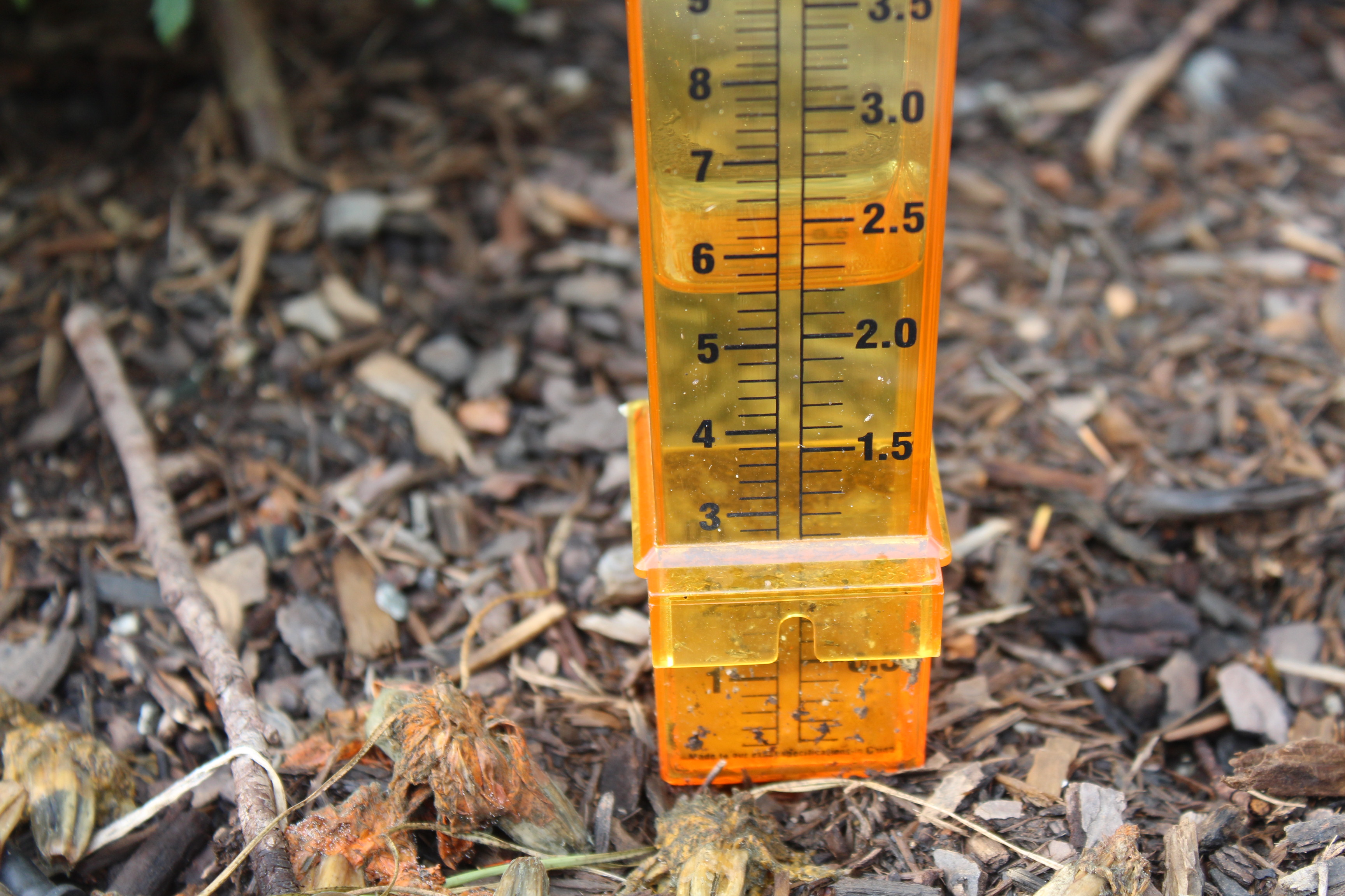 We had this much rain in two day time period.