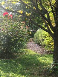 The garden path now.