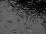 Here_comes_rain_again 2