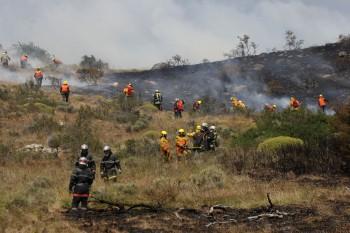 Incendio Torres del Paine