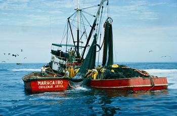 portada-pesquera