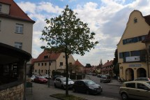 View of a part of the garden city of Hellerau, arriving at the market place.