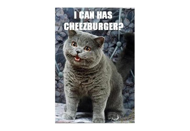 how to go viral - i can has cheezburger meme