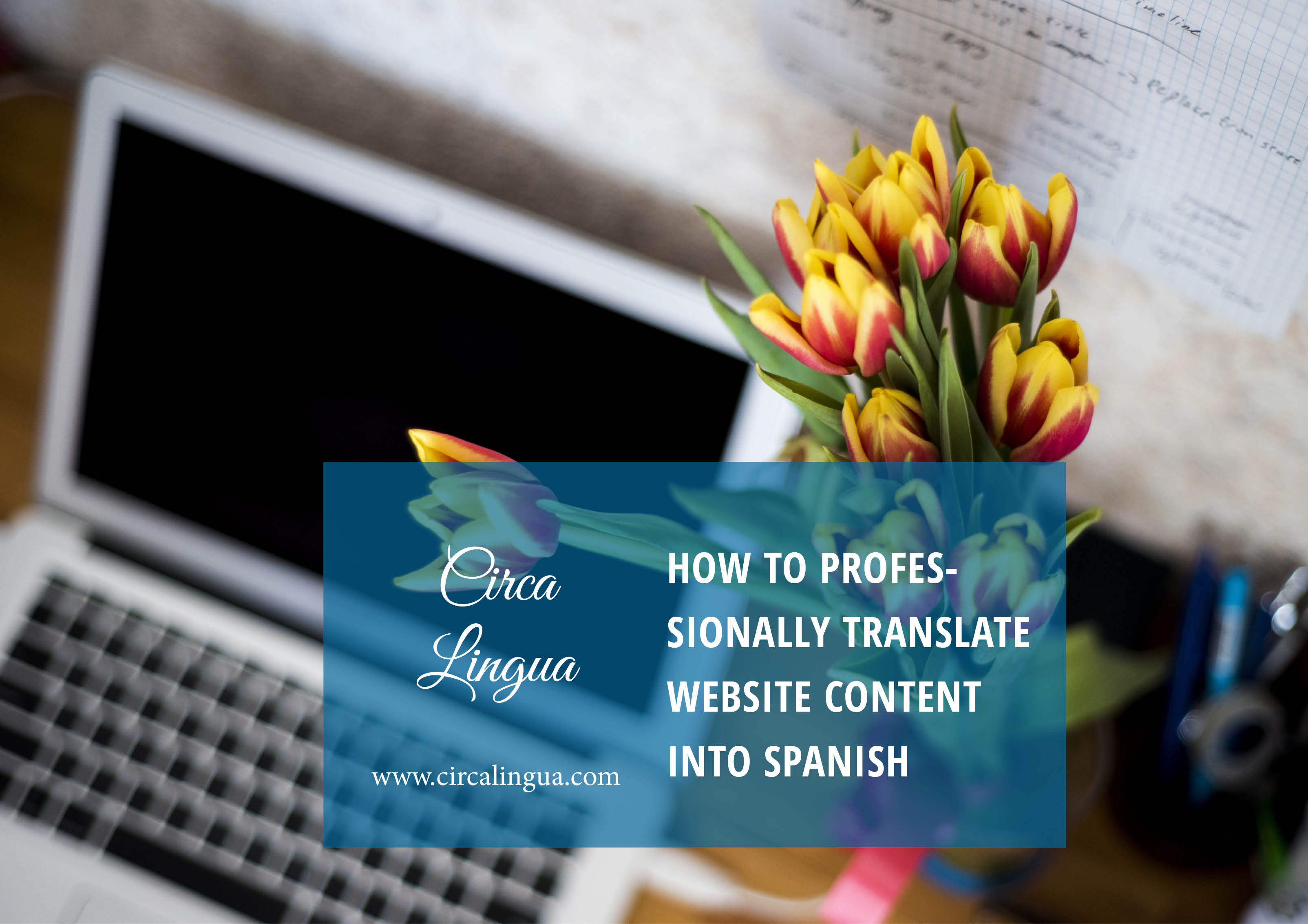 How to professionally translate website content into spanish circa translate website izmirmasajfo Image collections
