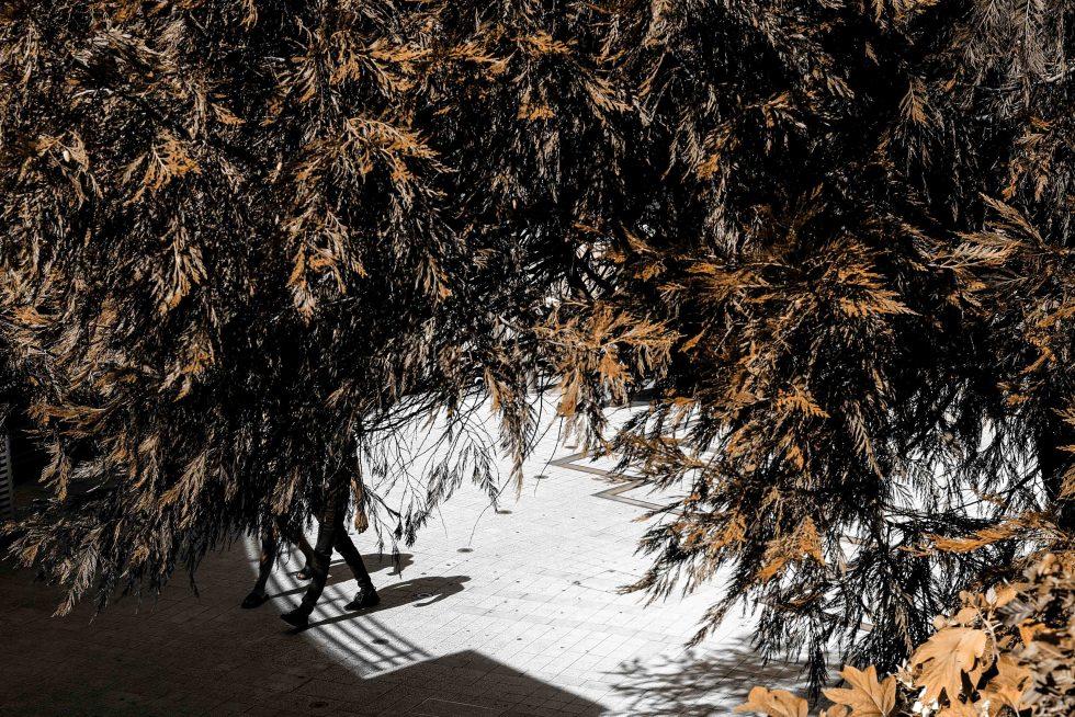 L'automne s'installe - La balade des gens heureux photographie