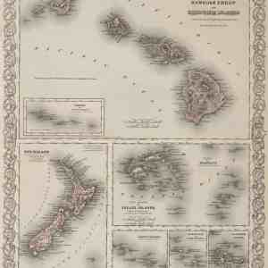 #3987 Sandwich (Hawaii) Islands, New Zealand, Fiji 1874