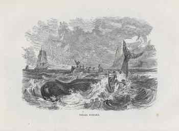 #4236 mid1800s Whale Fishery