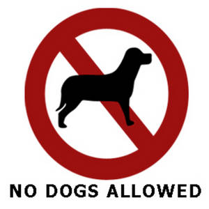 Social Stories for Neurotypical Adults #27 :  No dogs allowed (2/3)