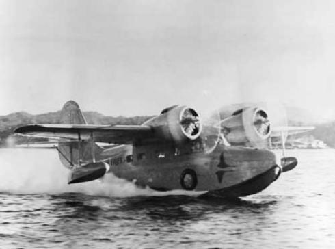 Goose-taking-off