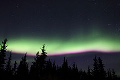 High Impact Aurora