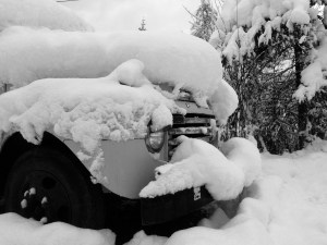 Buried '48 Ford